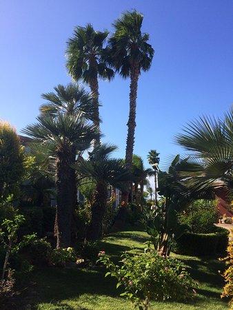 Sehr schöner Garten und Pool, eine Ruhe-Oase - Picture of Grand ...