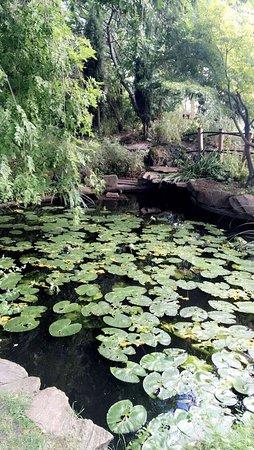Jardin botanique 2018 ce qu 39 il faut savoir pour votre visite tripadvisor - Jardin d hiver henri salvador clermont ferrand ...