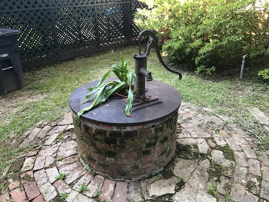 Natchez, MS: Water well in the back yard