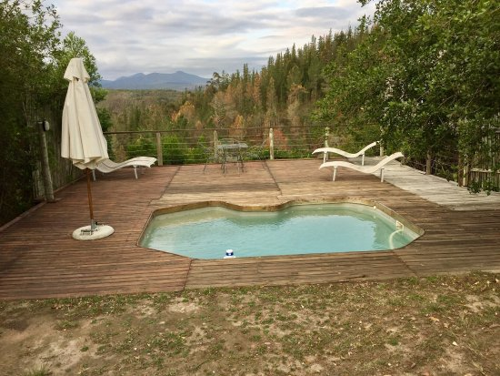 Forest Valley Cottages: photo8.jpg