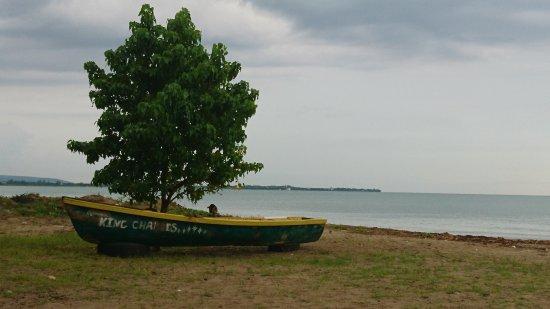 Cloggy's on the Beach: DSC_1952_large.jpg