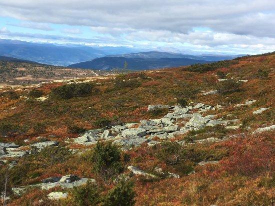 Municipalité de Ringebu, Norvège : photo1.jpg