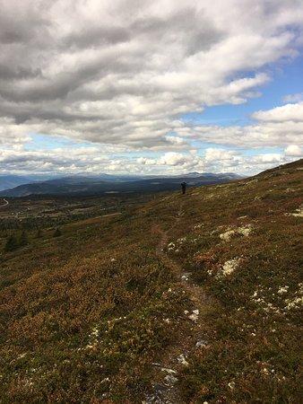Ringebu Municipality, Noorwegen: photo4.jpg