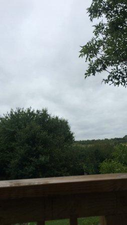 Henley in Arden ภาพถ่าย