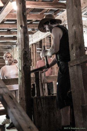 Grandes-Piles, Canadá: Yan qui nous montre à faire du bardeau pour le toit des camps