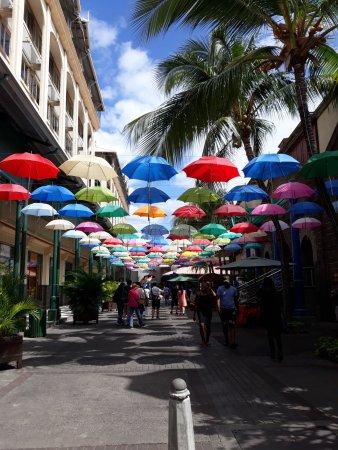 l'allée des parapluies