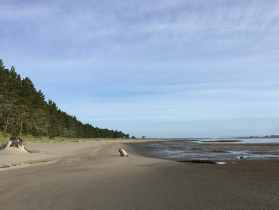 Ocean Park, WA: Along the Bay Loop Trail