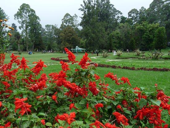 Victoria Park of Nuwara Eliya: Un parc payant sans grand intérêt comme le montre la photo