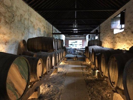 Santa Brígida, España: Wine barrels