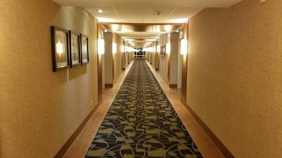 Saint Hyacinthe, Canada: large corridor