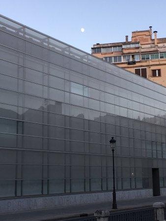 Museo de la Evolucion Humana : photo1.jpg