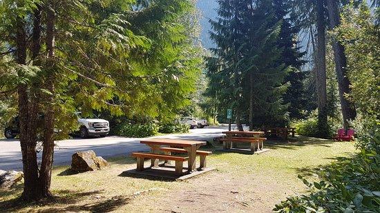 Giant Cedars Boardwalk Trail picnic tables & amenities