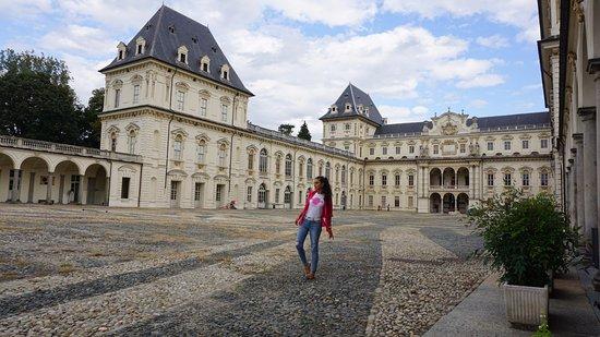 Province of Turin, Italië: Orta avlu, nehir çalılları ile zemin bezemei