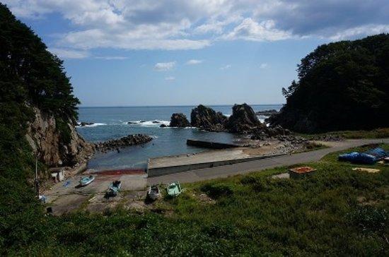 Hirono-cho, Japón: 遊歩道を下ると海岸に出ました