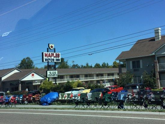 Maples motor inn pigeon forge motel reviews photos for Pigeon forge motor lodge pigeon forge tn