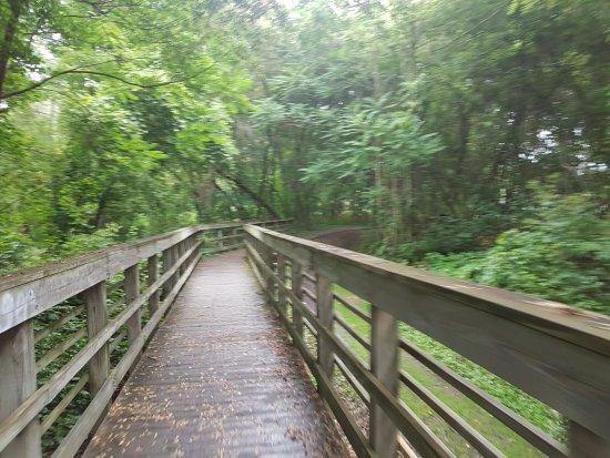 Penn Yan, نيويورك: Keuka Lake Outlet Trail
