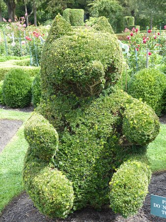 Portsmouth, RI: Bear