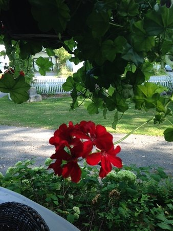 Wakefield, Canadá: Flowers were lovely on the porch