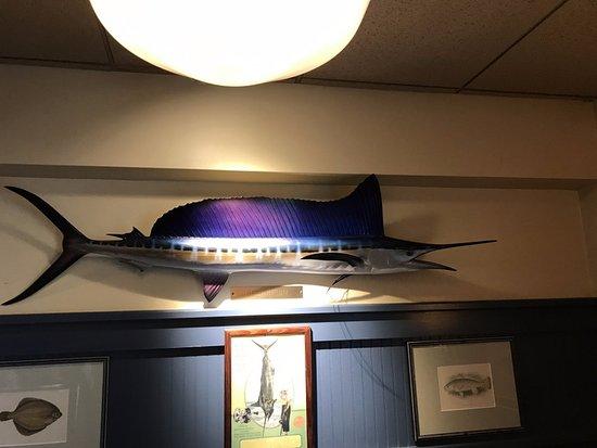 วอร์วิก, โรดไอแลนด์: Learned something about fish while I was here!