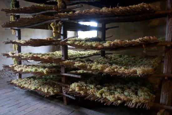 Castello Sonnino: Grapes for Vinsantos