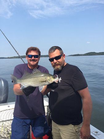 Nashville fishing charters percy priest lake 2018 all for Tennessee fishing guide
