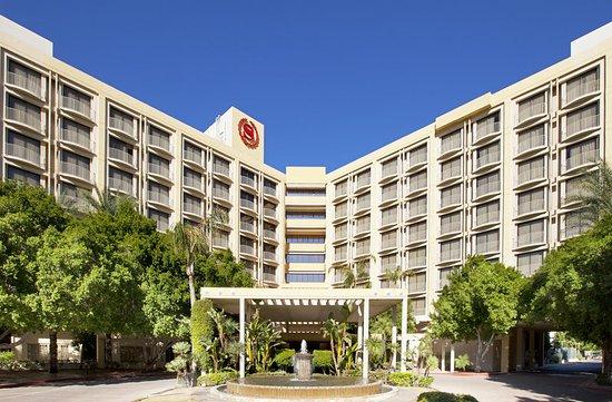 新月喜來登酒店照片