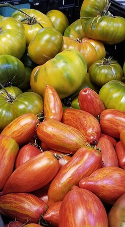 Gopher Glen Farms: Beautiful tomatoes.