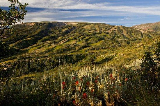 The Westin Snowmass Resort: Snowmass Colorado Summer