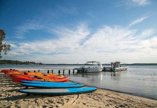 Cams Wharf, Australia: Kayak, SUP & Boat Hire