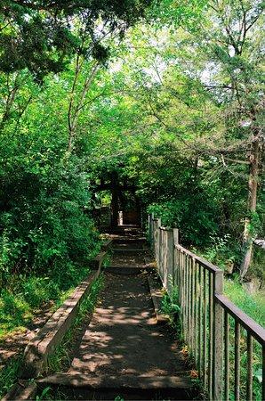 Vermillion Falls: photo3.jpg