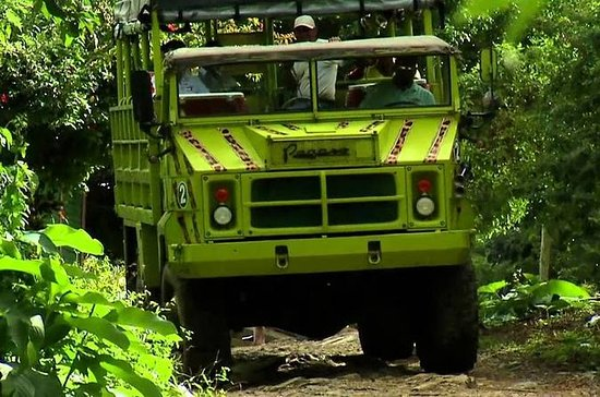 Full-Day Safari Tour from Punta Cana