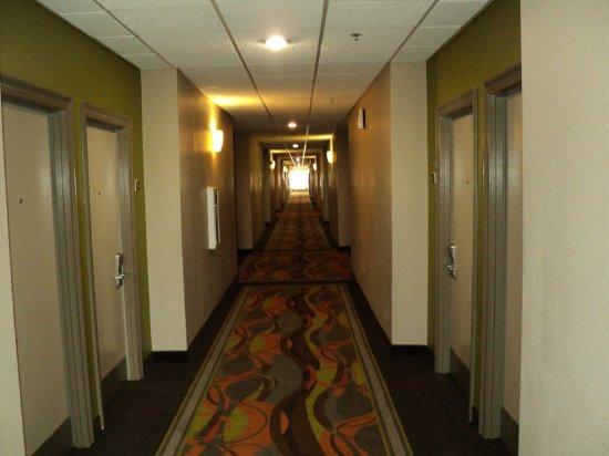 Holiday Inn Opelousas: Hallway