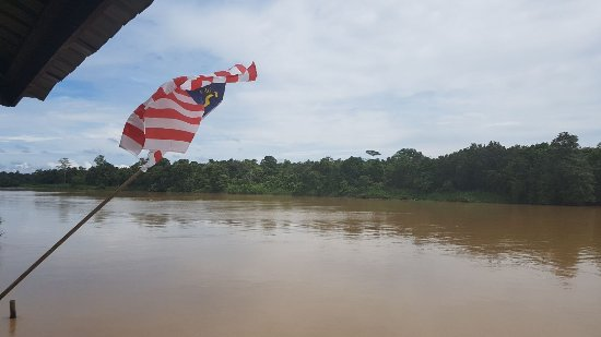 Borneo Nature Lodge: IMG-20170914-WA0002_large.jpg