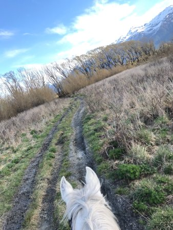 Glenorchy, Nueva Zelanda: AMAZING ride, gorgeous scenery, horses & staff were fantastic. Definitely recommend doing this w