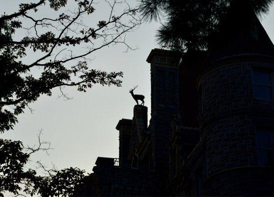 Boldt Castle and Yacht House: photo3.jpg