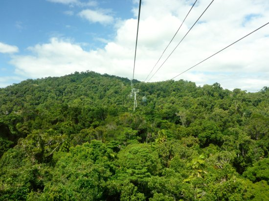 Smithfield, ออสเตรเลีย: Travelling over treetops on the skyrail