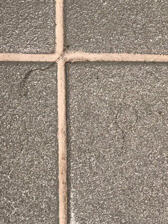 Ibis Sydney World Square: photo1.jpg