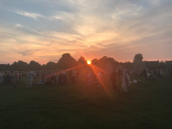 Avebury stone circle, summer solstice, the spaniel puppy ❤️