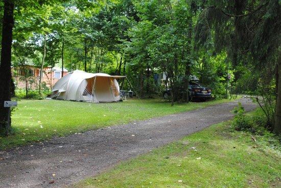 Walkenried, Niemcy: overzicht van camping plek