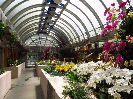 Picture Of Hong Kong Zoological And Botanical Gardens Hong Kong Tripadvisor
