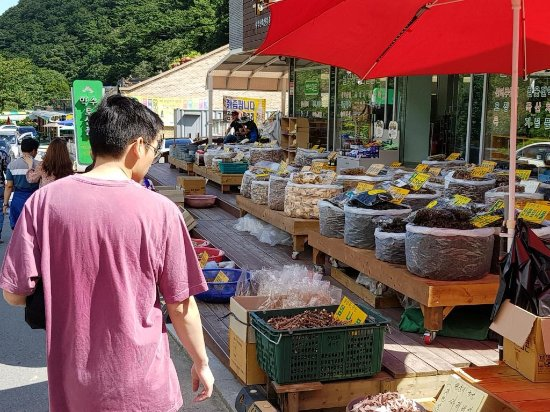 Sokcho, เกาหลีใต้: Yaksuteo stalls selling medicinal roots and mushroom