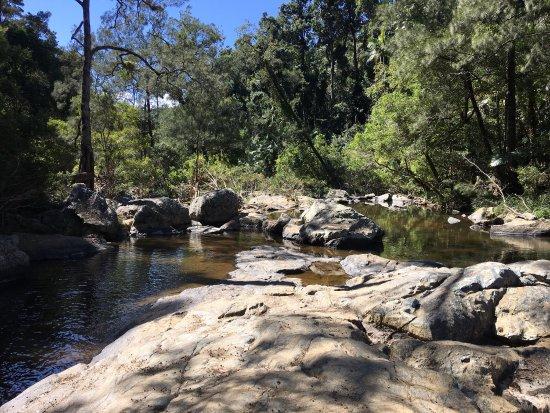 Eungella, Australia: photo3.jpg