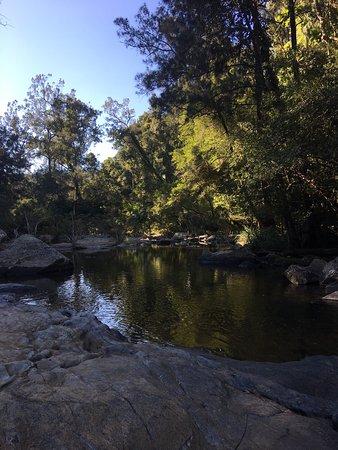 Eungella, Australia: photo4.jpg