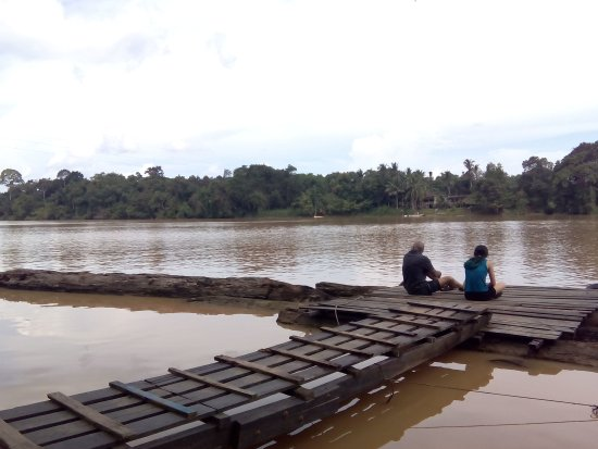 Sukau, Malásia: IMG_20170906_141639_large.jpg