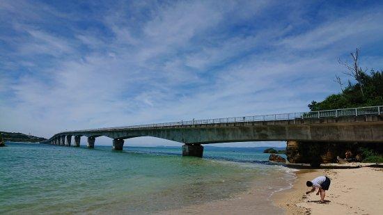 Nakijin-son, Jepang: 橋の全体外観