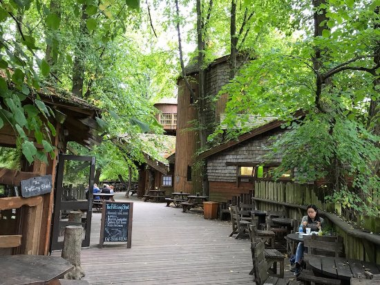 The Treehouse Restaurant at the Alnwick Garden: Up in the trees