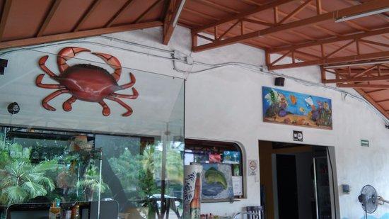 La Cruz de Huanacaxtle, Meksiko: Inside Rincon del Buzo