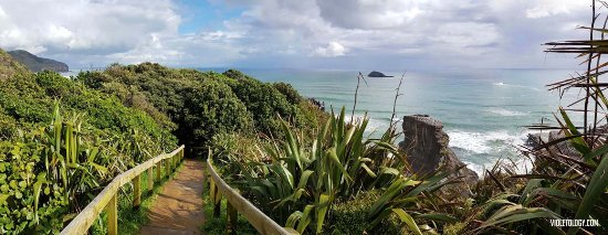 Muriwai Beach, Новая Зеландия: Pathways to the view deck