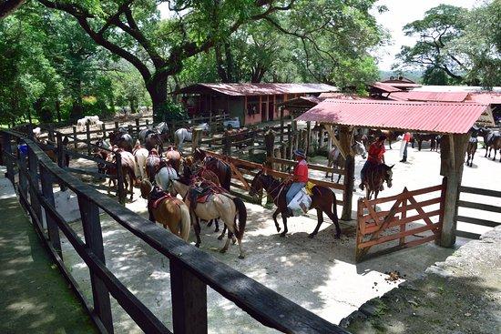 Hacienda Guachipelin Image
