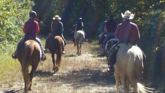 New Bern, Carolina del Norte: riding Magnolia Plantation